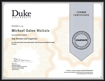 Cognition and Emotion Certificate