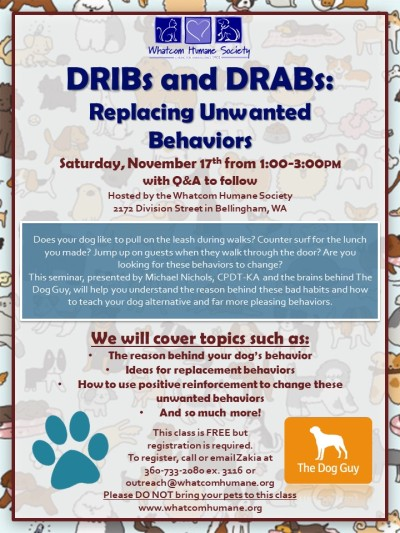 DRIBs and DRABs (1)