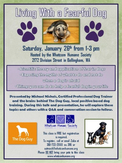 Fearful Dogs Class Jan 2019